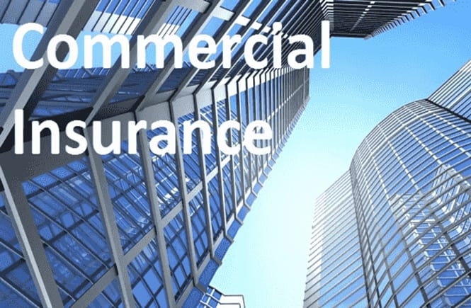 The Importance of Insurance for Your Business-min